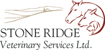 STONE RIDGE VETERINARY SERVICES LTD